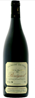 Domaine Lefief Bourgeuil 2009 750ml